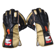 wicket-keeping-gloves-black-back