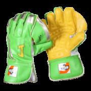 wicket-keeping-gloves-titanium-alt